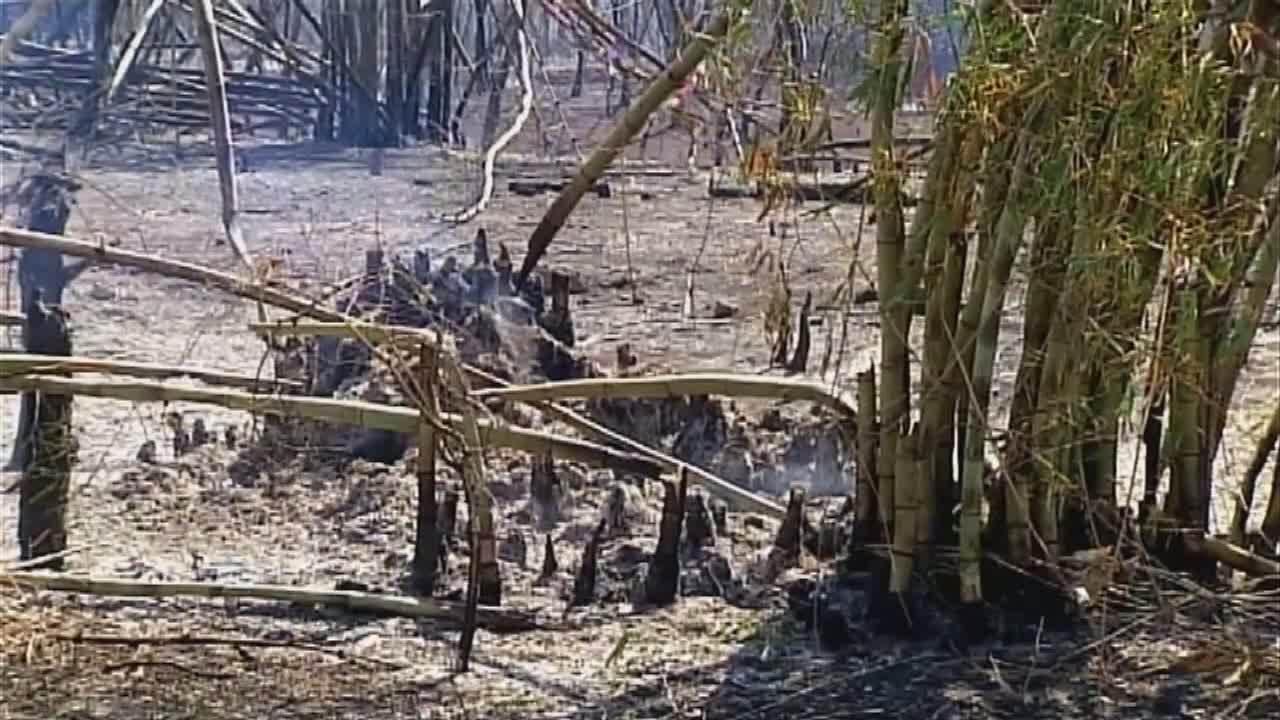 Após cerca de 24h, bombeiros combatem incêndio às margens da AMG-2595, em Uberaba