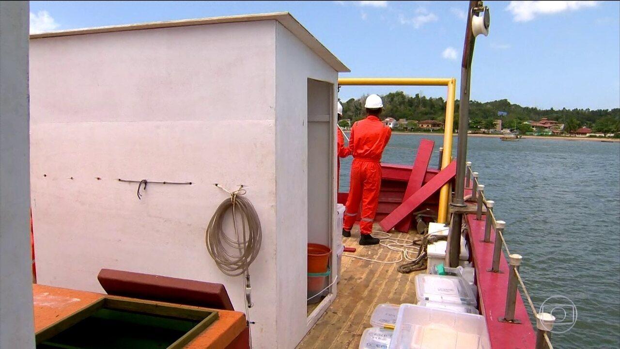 Pesquisadores avaliam danos provocados por rompimento de barragem da Samarco a817f2d557d47