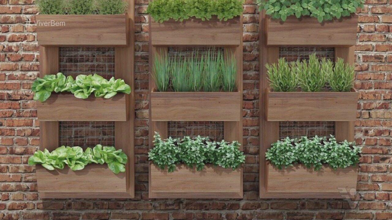 Dicas mostram como ter hortas caseiras em ambientes pequenos