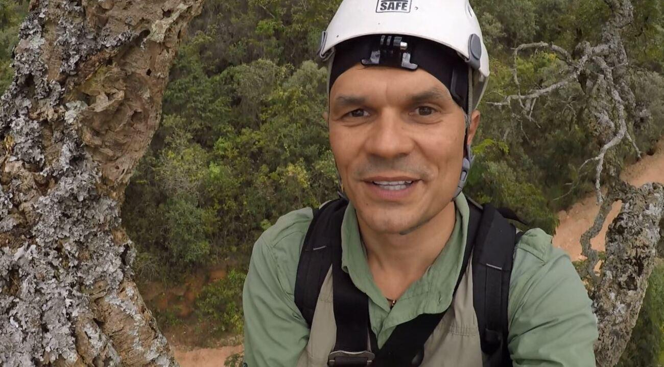 Repórter escala árvore com cerca de 20 metros de altura