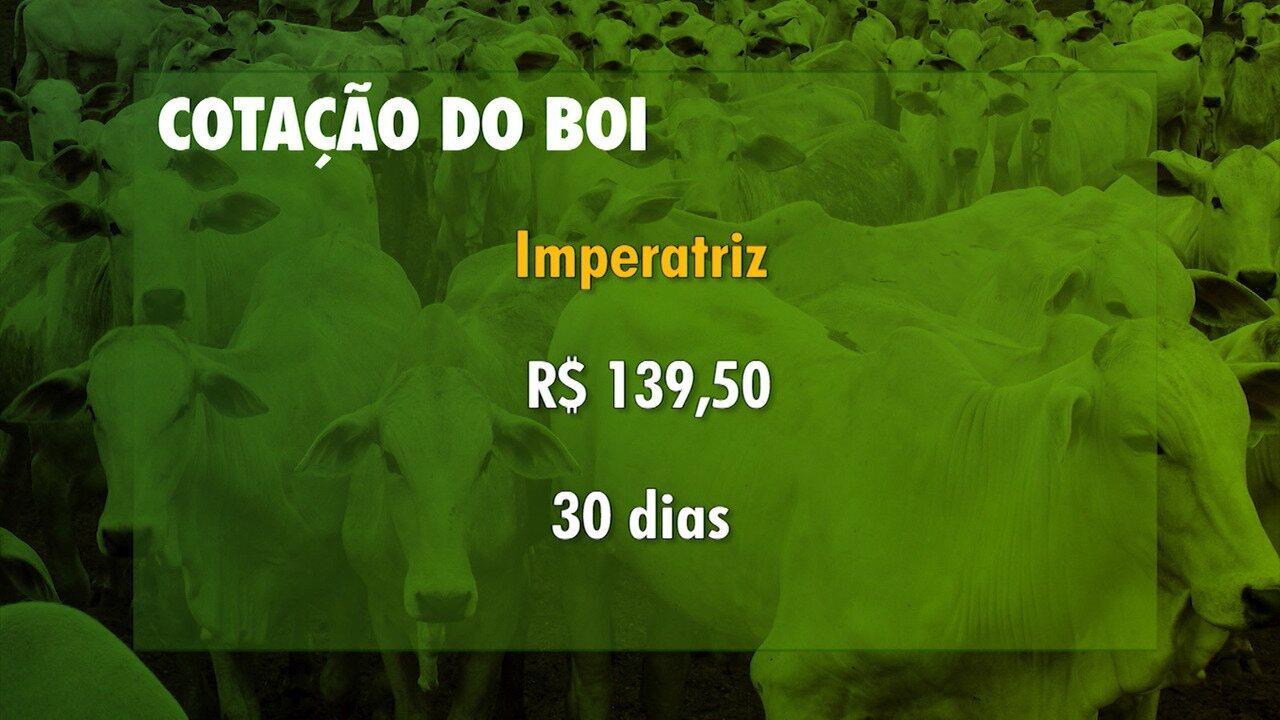 Confira a cotação de grãos e o mercado de boi gordo