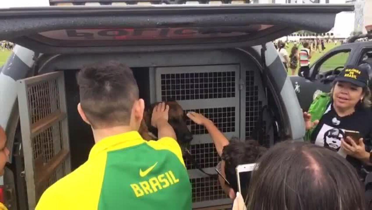 Crianças brincam com cachorro da PM, durante posse se Bolsonaro