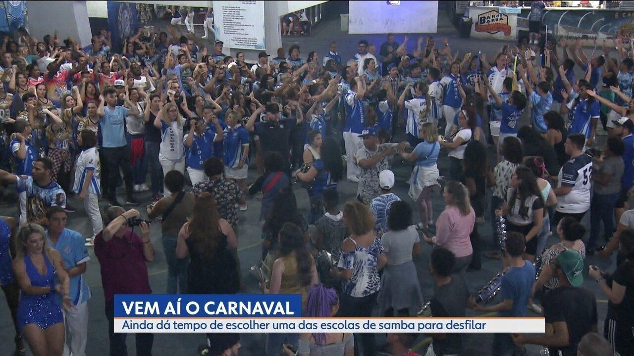 Carnaval 2019: ainda dá tempo de desfilar em uma das escolas
