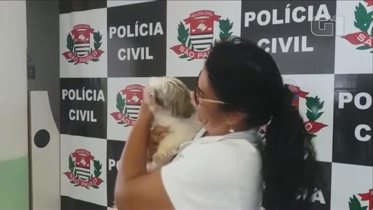 Mulher acha cão sumido há três meses e resgate vira caso de polícia