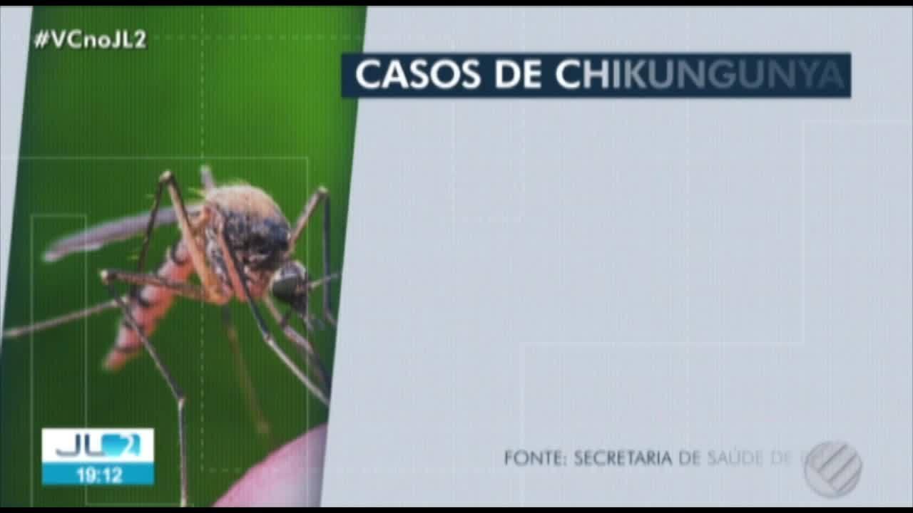 Em Belém, casos de chikungunya quase triplicam em 2018, em relação a 2017, diz Sespa