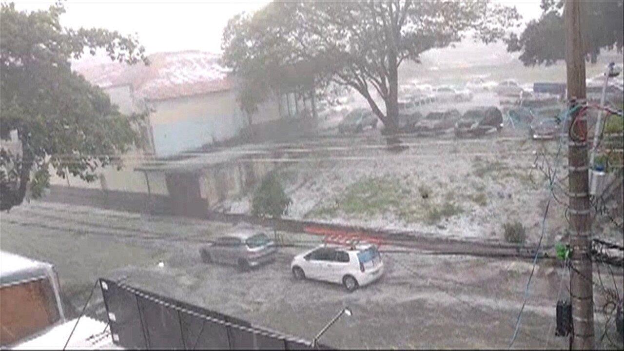 Tempestade com ventania e granizo derruba árvores em São José