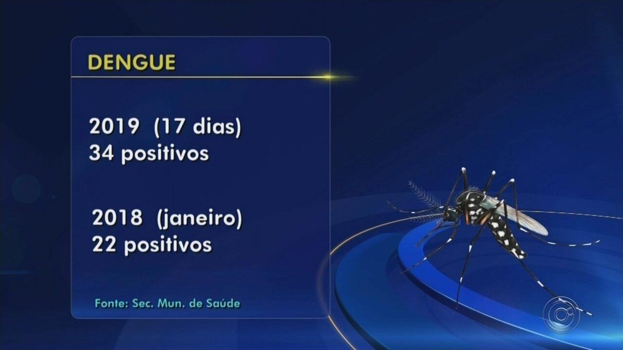 Rio Preto fica em alerta neste ano por causa do mosquito Aedes aegypti