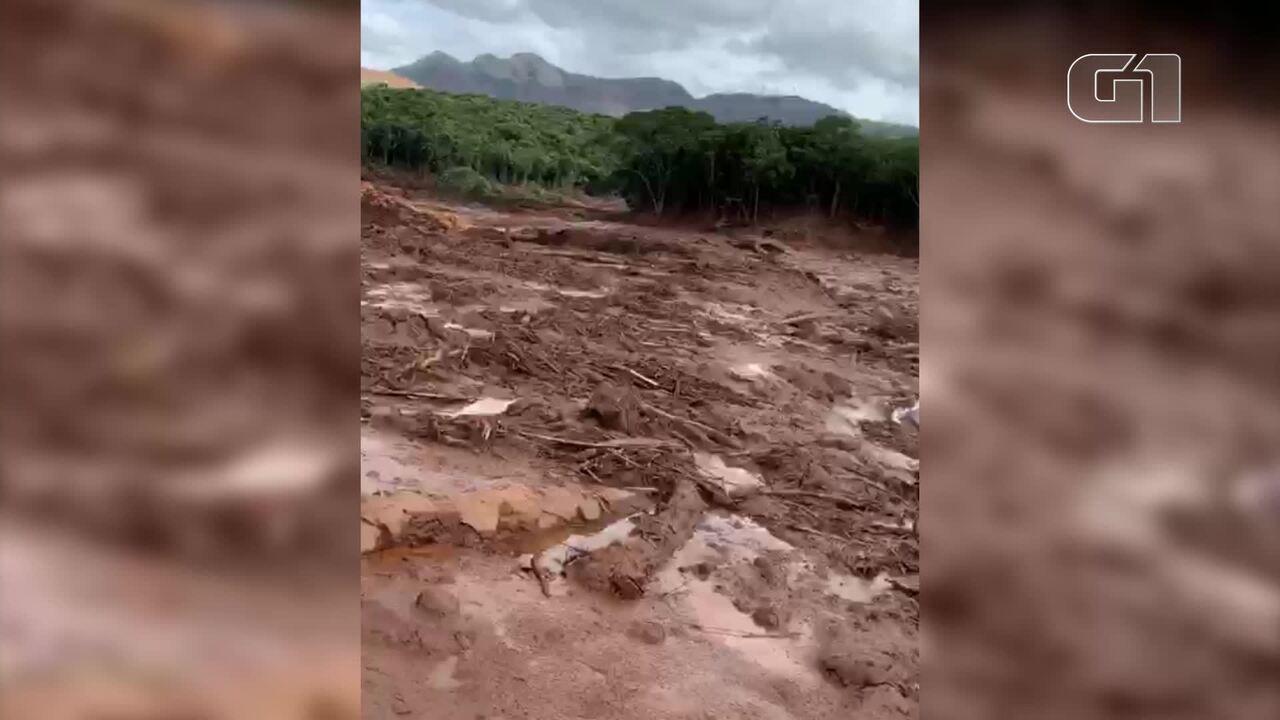 Voluntários filmam vaca atoalada em lama em Brumadinho