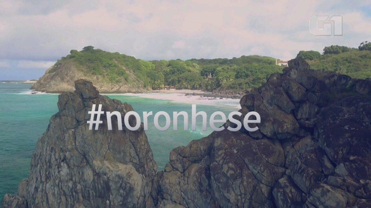 Desafio Natureza em Fernando de Noronha: G1 resume desafios da luta contra o lixo na ilha