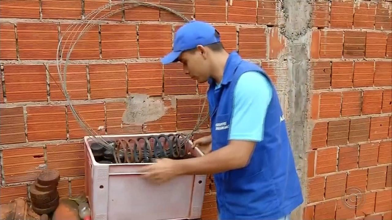 Centro-Oeste Paulista tem 26 cidades com taxa zero de infestação do mosquito da dengue
