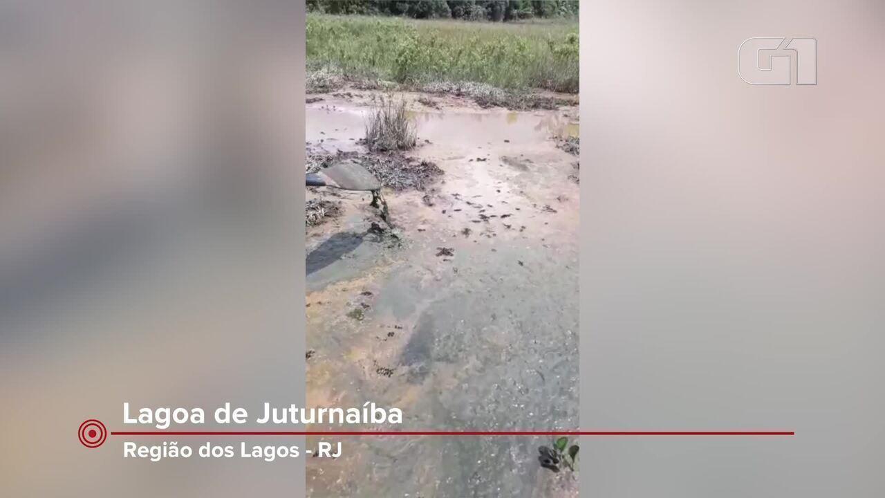 Durante vistoria MPF constatou presença de alumínio na beira da Lagoa de Juturnaíba, no RJ