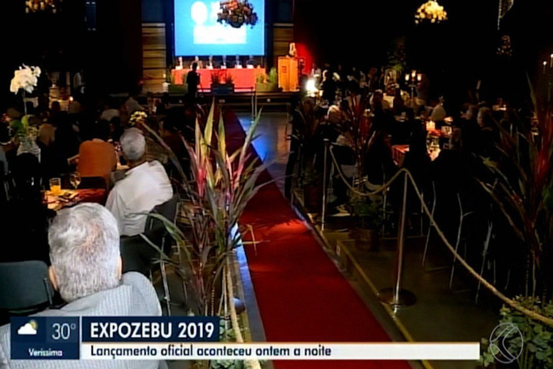 Em Uberaba, Expozebu pretende registrar nova raça e bater recorde no Guinness Book