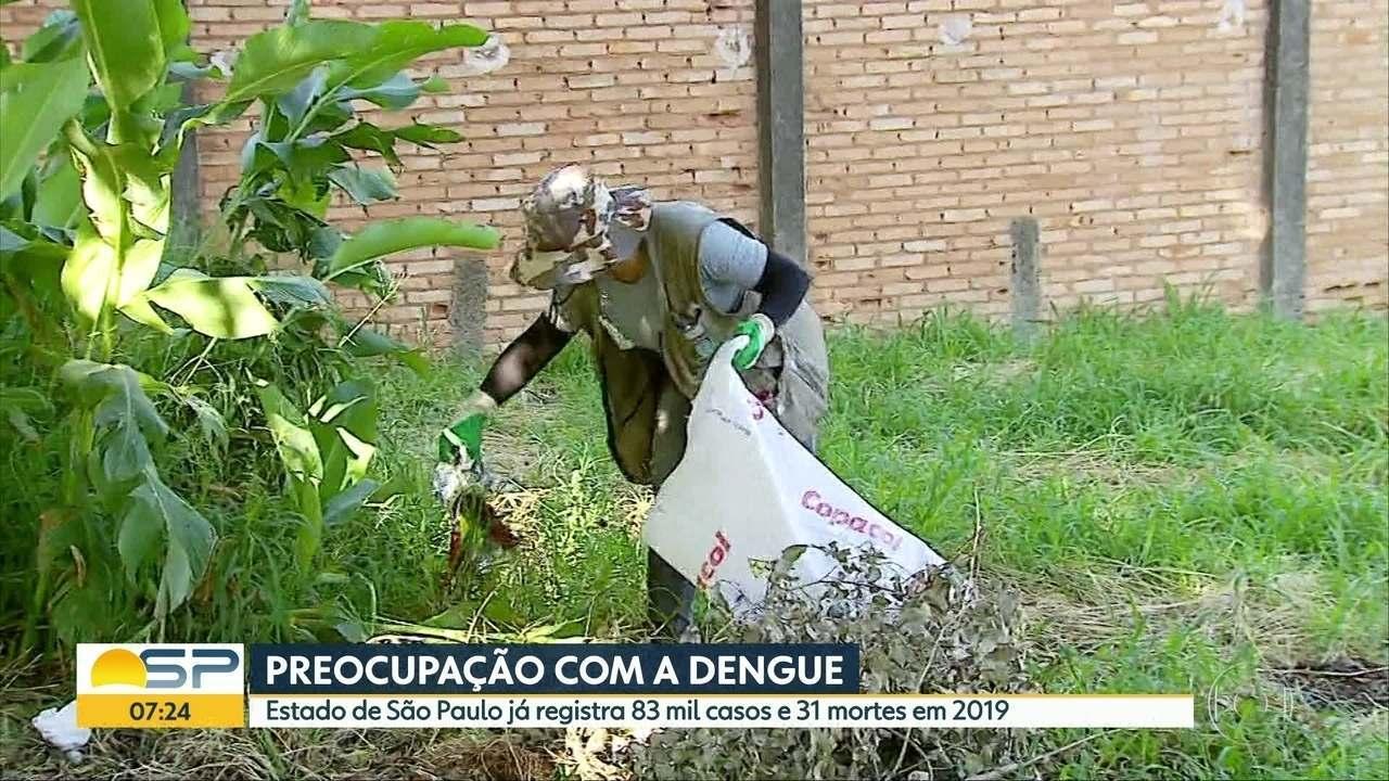 Cassos de dengue aumentam mais de 2.000% neste ano em SP