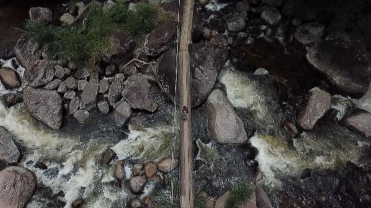 Aves não costumam frequentar áreas de cachoeira: entenda