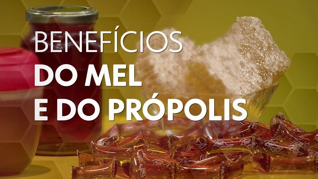 Especialista explica benefícios do mel e da própolis