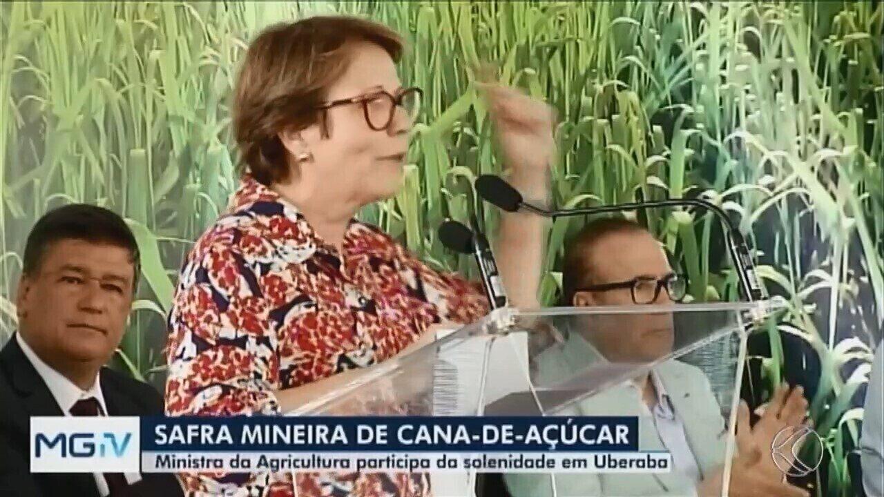 Ministra da Agricultura participa de abertura da safra de cana-de-açúcar em Uberaba