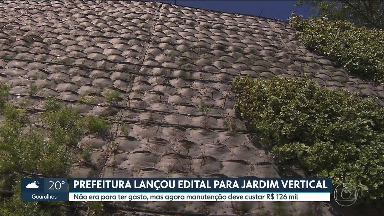 Prefeitura lança edital para jardim vertical na 23 de maio