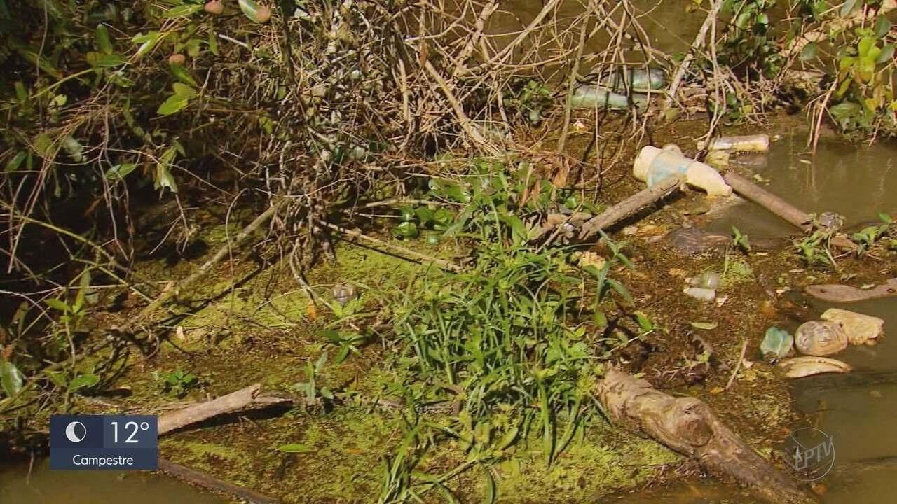 Rio Verde ganha barreira ecológica para combater a poluição