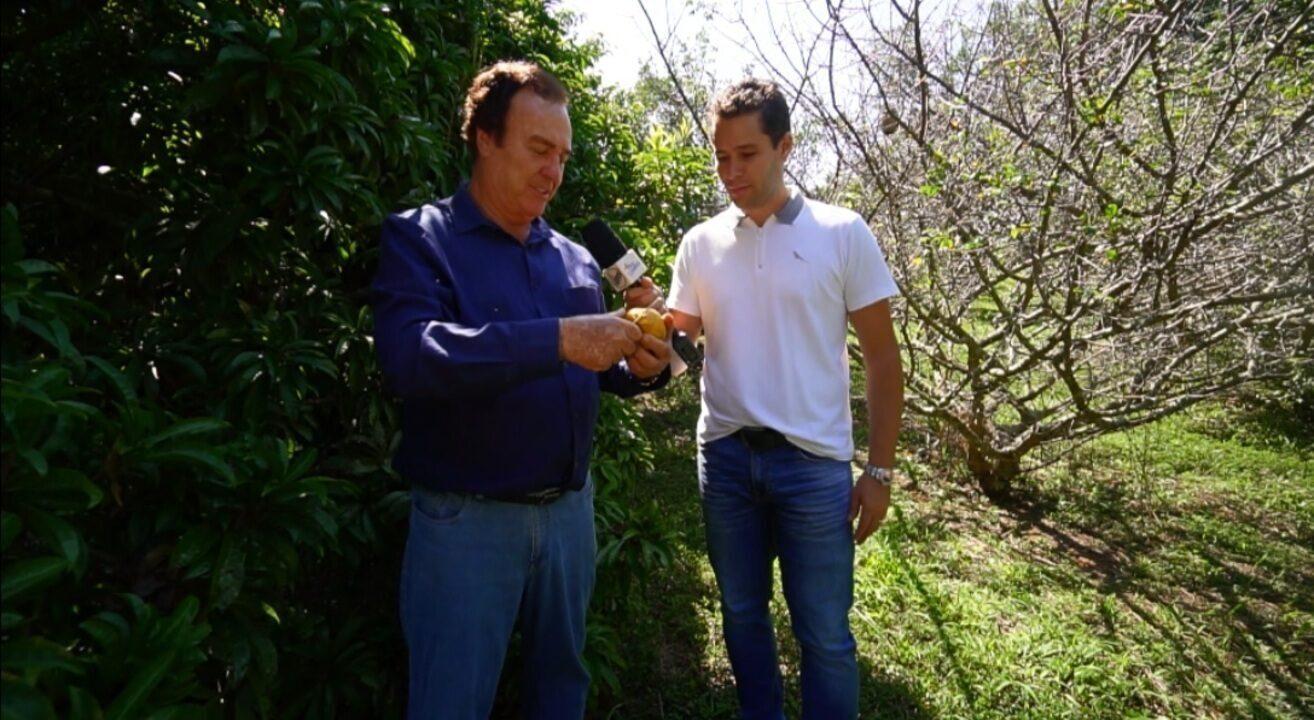 Pedro Leonardo conheceu pomar de frutas raras em Rio Claro (SP)