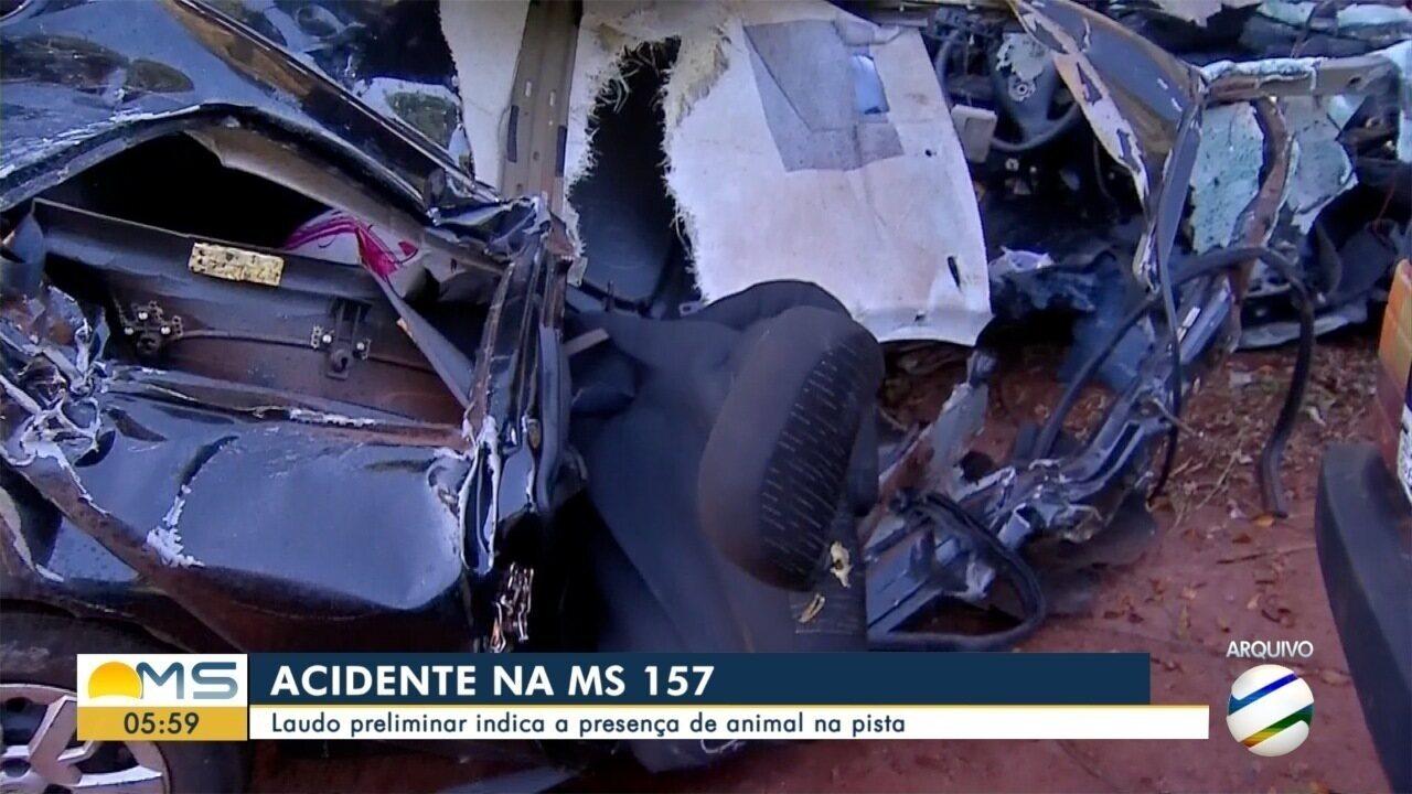 Laudo preliminar aponta indícios de atropelamento de capivara em acidente que matou jovens