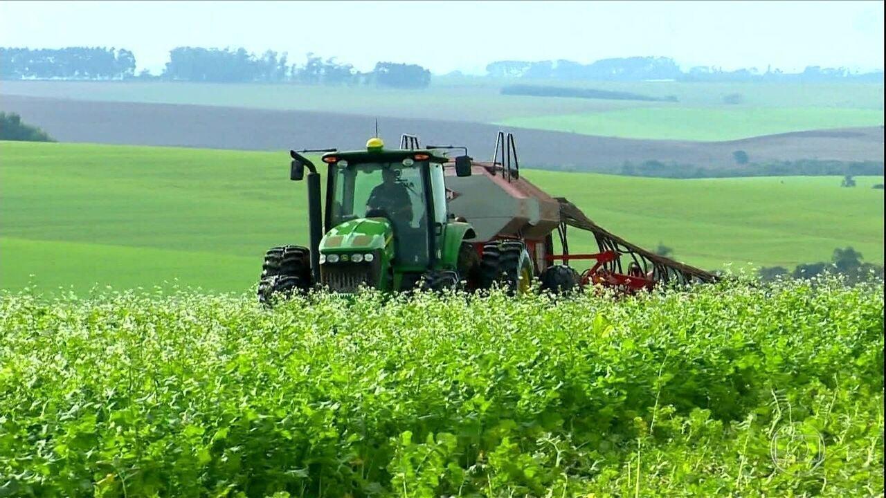 Plantio do trigo começa com atraso no Rio Grande do Sul