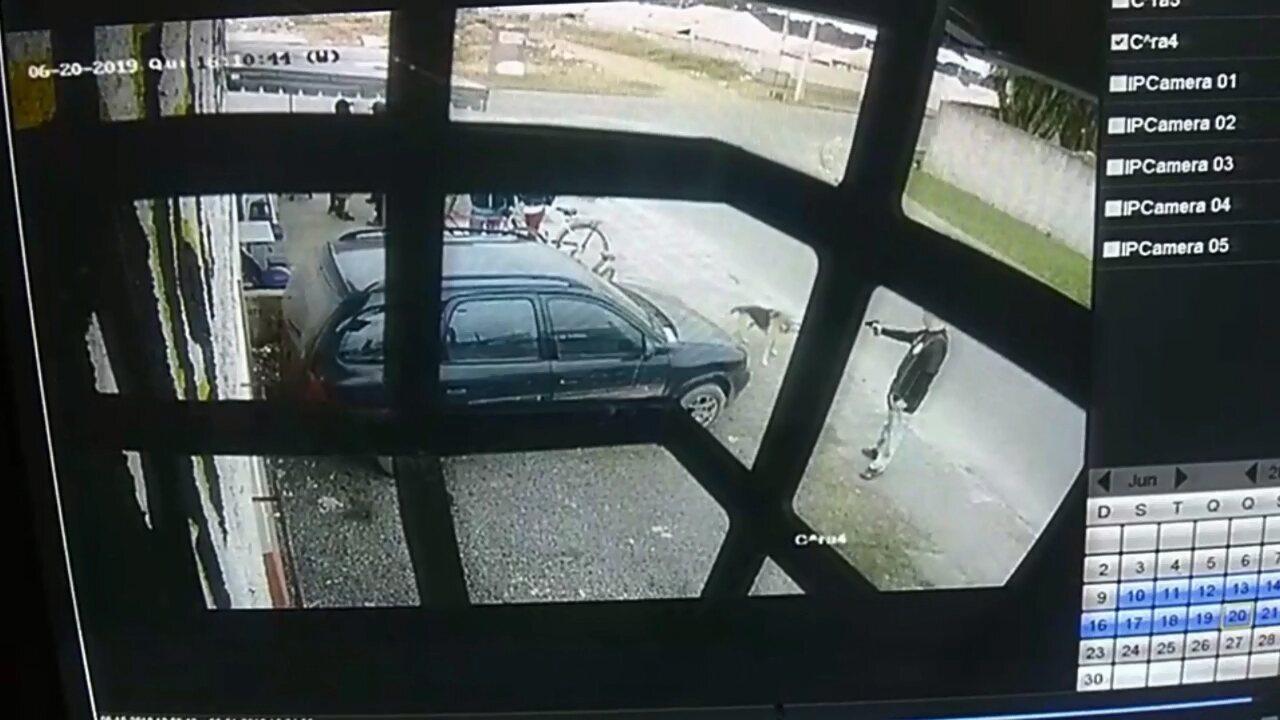 Vídeo mostra homem atirando em cachorro na rua, em Piraquara