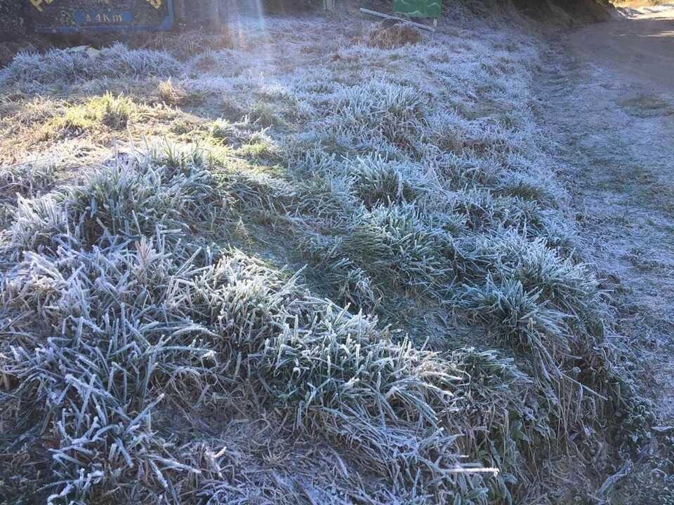 Parque Nacional do Itatiaia registra -8.1 graus na madrugada desta segunda