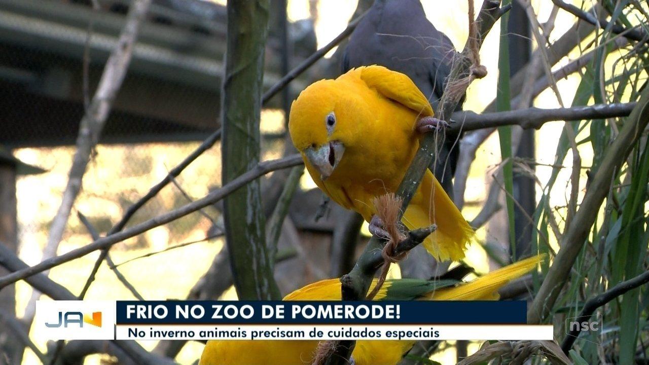 Animais do zoológico de Pomerode recebem cuidados especiais no frio
