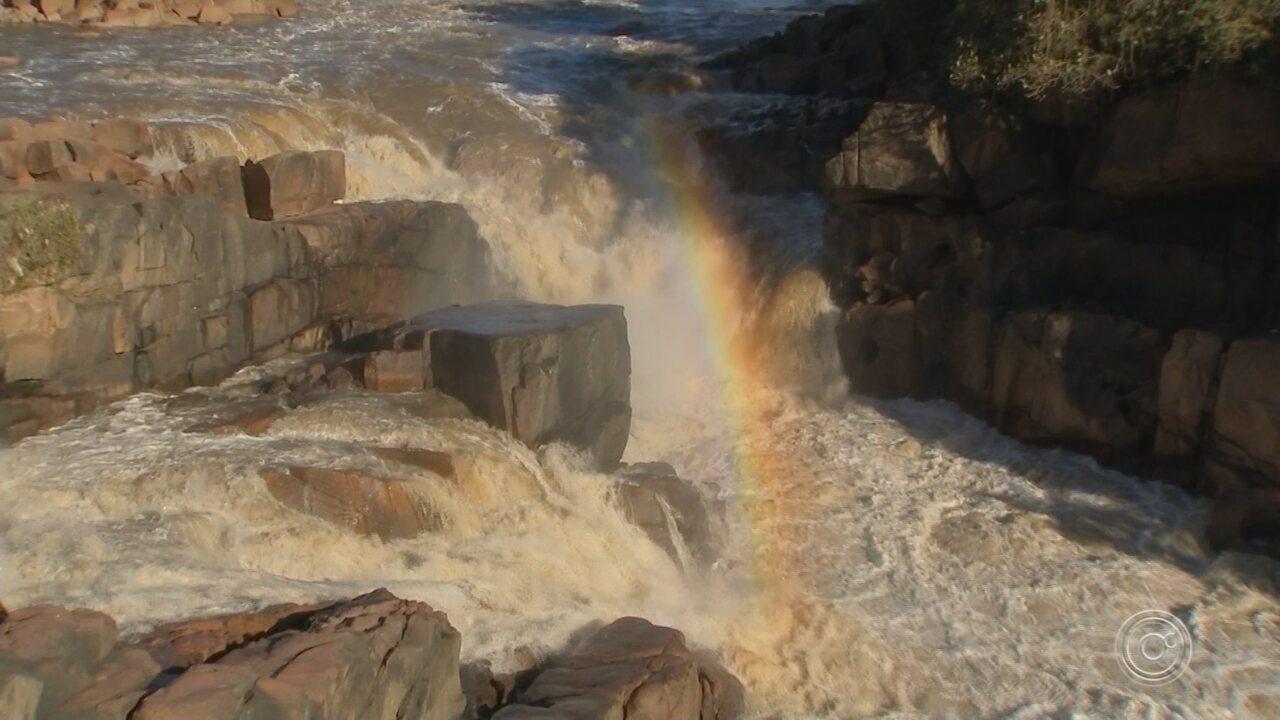 Prefeitura começa a limpar sujeita deixada pelo Rio Tietê