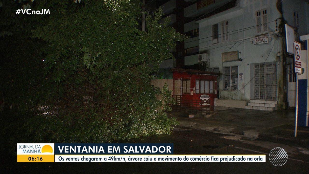 Ventania causa estragos em bairros da capital muda a rotina dos soteropolitanos