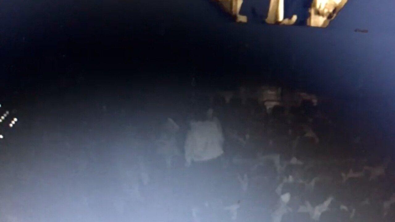 Câmeras de segurança mostram briga em cinema que terminou com PM matando homem