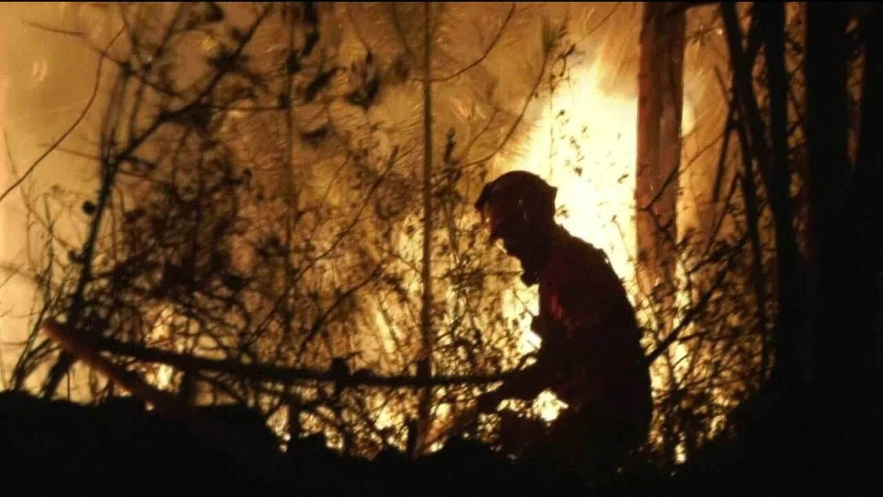 Bombeiros combatem incêndio florestal em Portugal