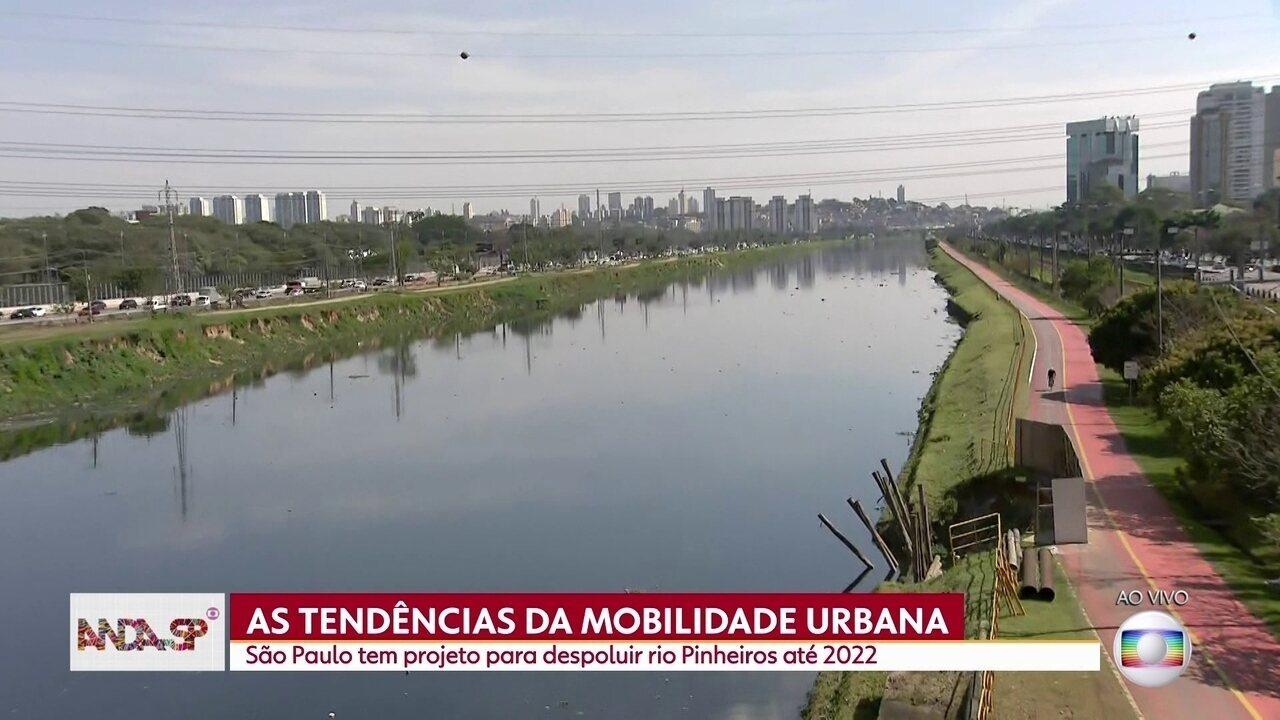 São Paulo tem projeto para despoluir Rio Pinheiros e usá-lo para transporte hidroviário