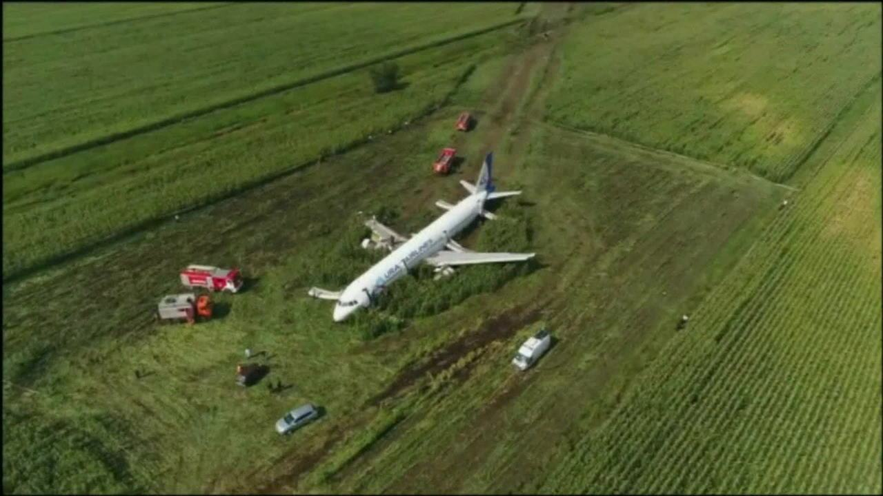 Avião russo faz pouso forçado após colidir com pássaros