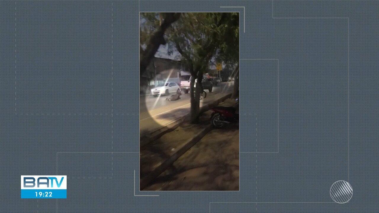 Vídeo mostra jumento preso a caminhonete sendo arrastado por rua em Barreiras