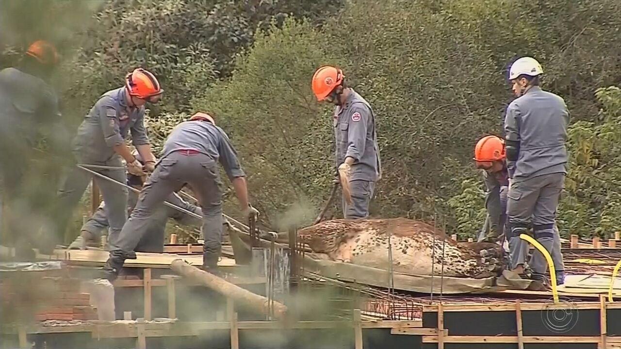 Bombeiros resgatam vaca que ficou presa em laje de casa em construção em Botucatu