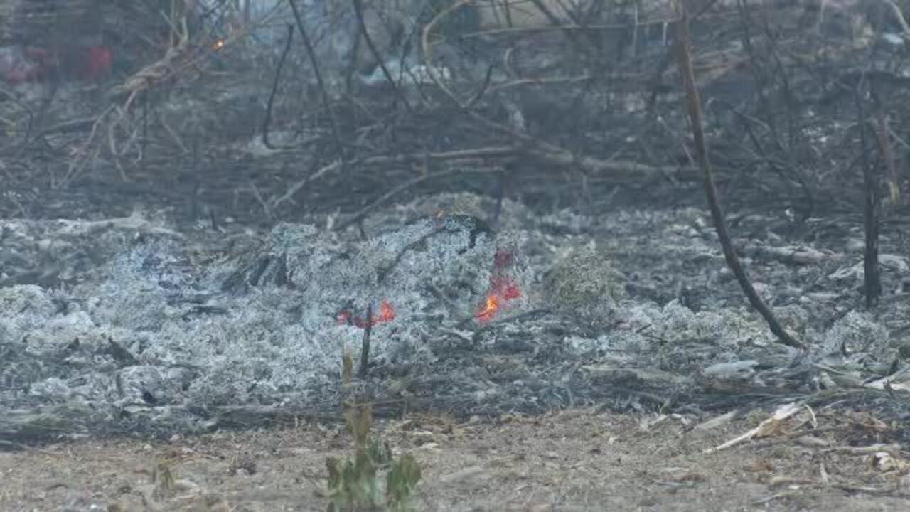 Incêndio atinge área de proteção ambiental