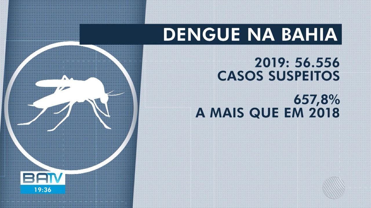 Bahia tem aumento de mais de 650% nos casos de dengue e enfrenta falta de inseticida