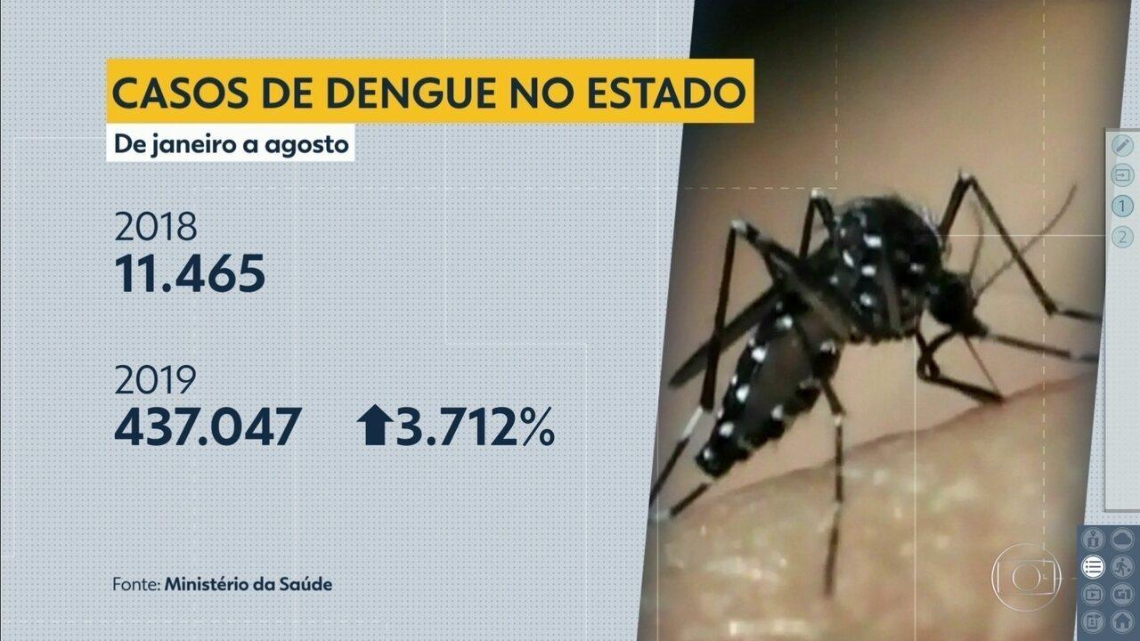 Casos de dengue têm aumento de mais de 3.000% no estado de São Paulo