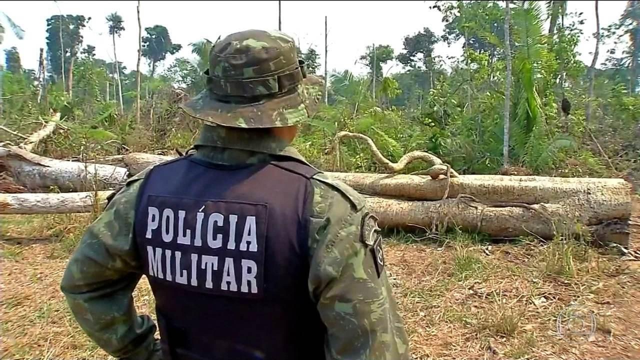 Impunidade incentiva o desmatamento no Brasil, diz um estudo