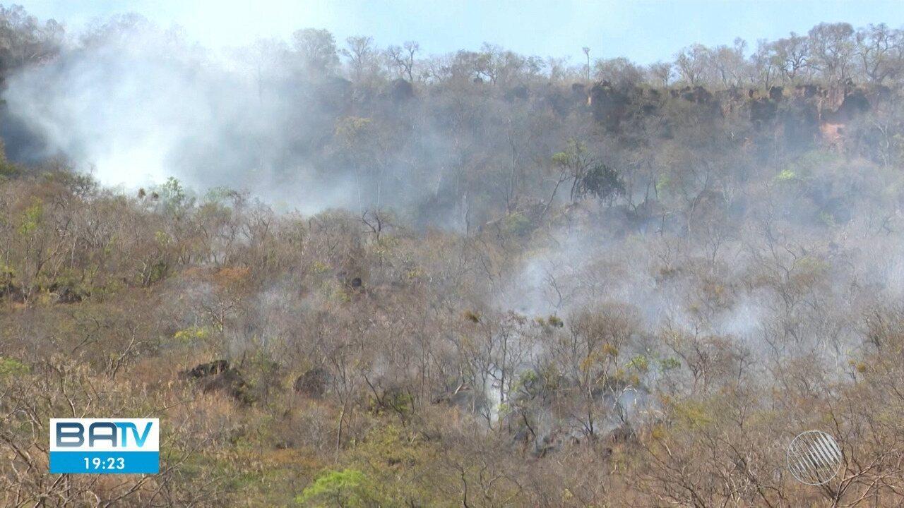 Número de queimadas aumenta 58% no estado da Bahia em comparação ao ano passado