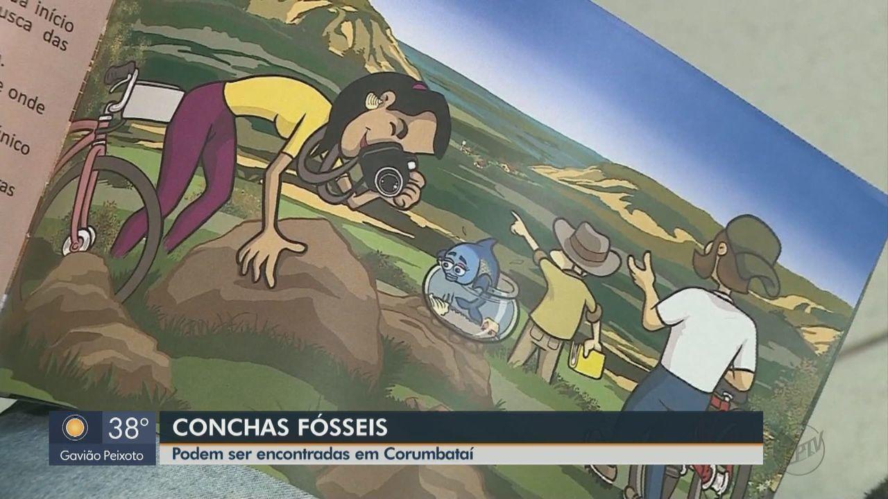 História das conchas fósseis de Corumbataí vira livro infantojuvenil