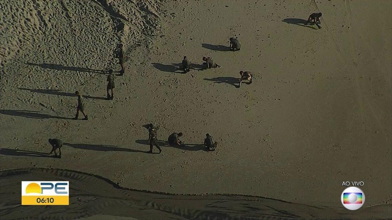 Exército reforça limpeza de praias atingidas por óleo no litoral pernambucano