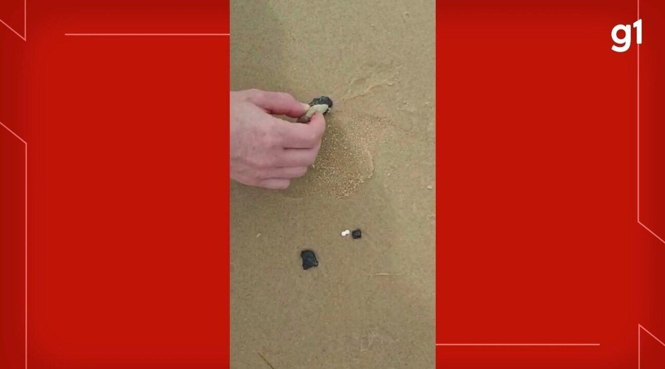 Manchas de óleo chegam à praia Canoa Quebrada, uma das mais visitadas do Ceará