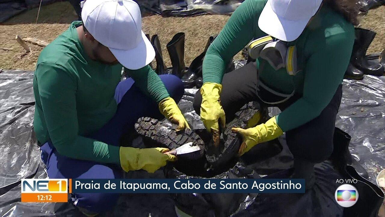'Biodetergente' ajuda na limpeza de equipamentos de proteção e animais atingidos por óleo