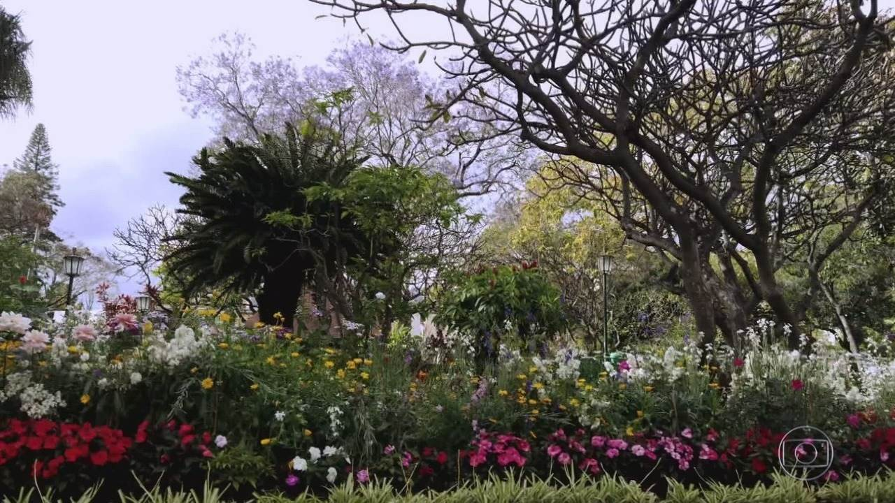 Globo Repórter - 01/11/2019 - 'Globo Repórter' mostra as belezas da Ilha da Madeira, um dos destinos mais visitados de Portugal.