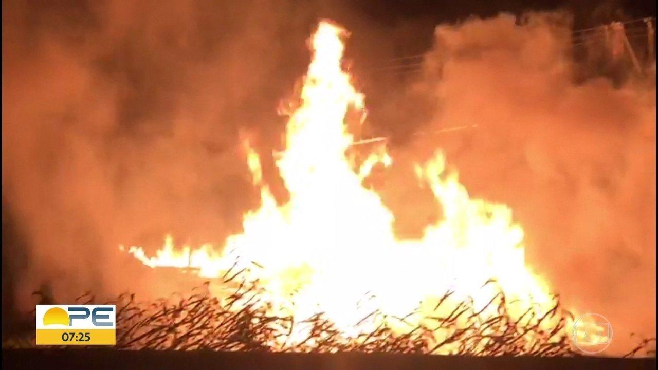 Incêndio atinge madeireira no Cabo de Santo Agostinho, no Grande Recife