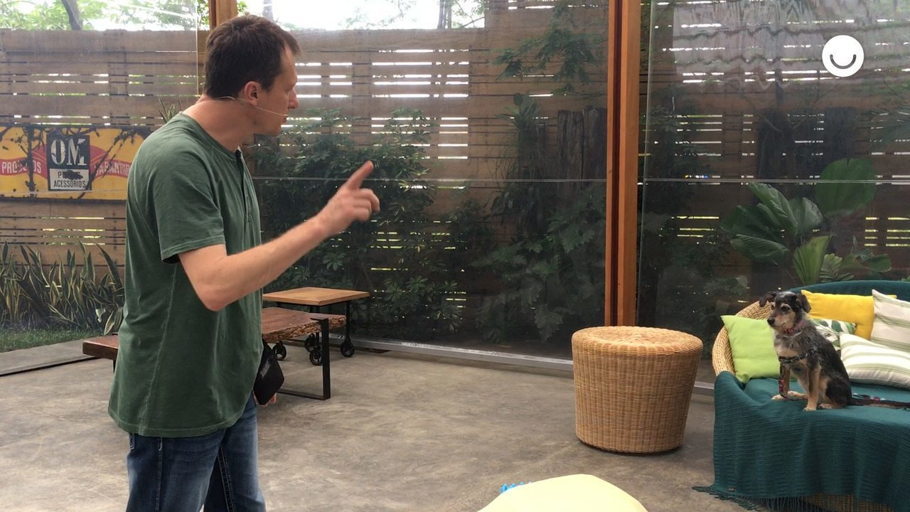 Alexandre Rossi dá dicas para testar os sentidos dos cães