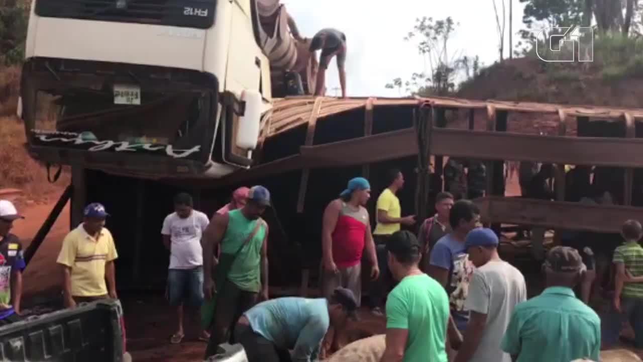 Bois são saqueados de caminhão que tombou na rod. Transamazônica no Pará
