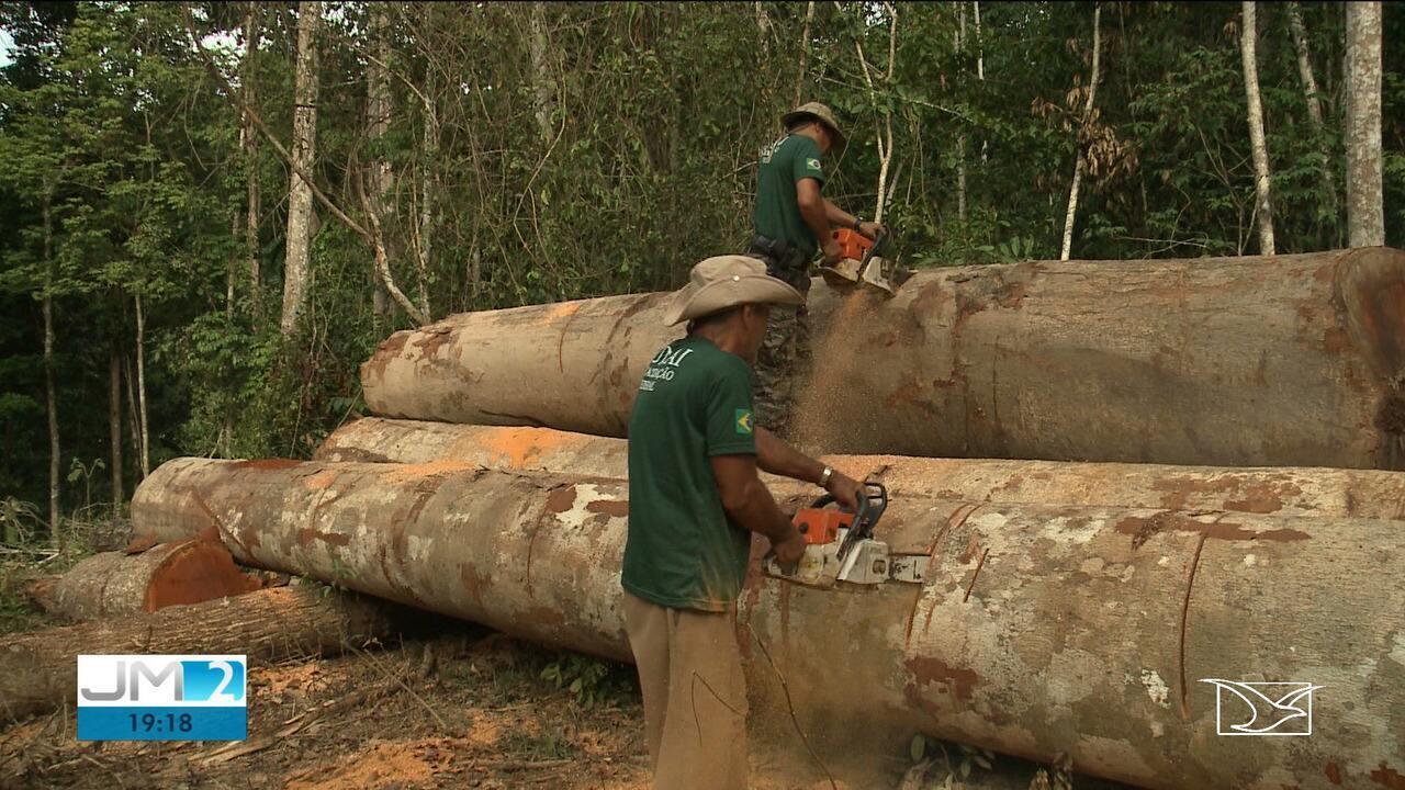 Amazônia Maranhense: Zona de Risco - 30 anos de conflito entre índios e madeireiros
